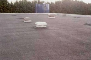 Flat Roof Waterproofing – Austin Reed